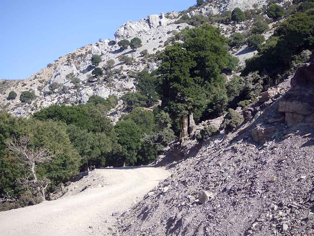Crete 16
