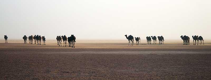 Maroc_13_17